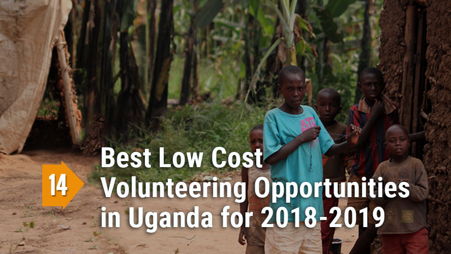 Top 14 Best, Low Cost, and Highly Rated Volunteering Opportunities in Uganda