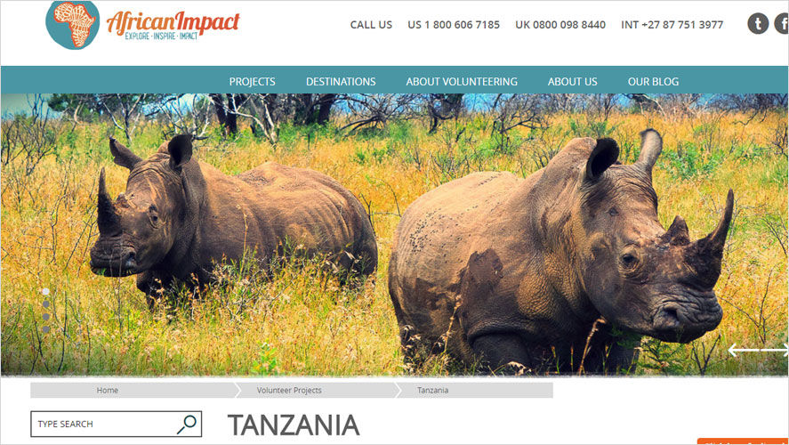 African Impact Tanzania volunteer experience