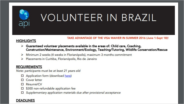 api volunteer in brazil