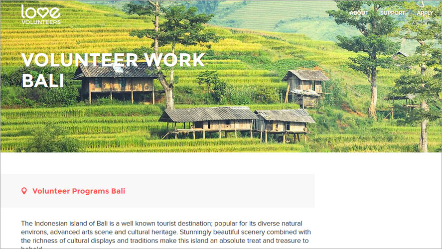 Best Volunteer Opportunities In Bali by Love Volunteers