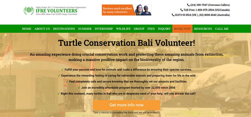 Sea turtle volunteer with IFRE Volunteers