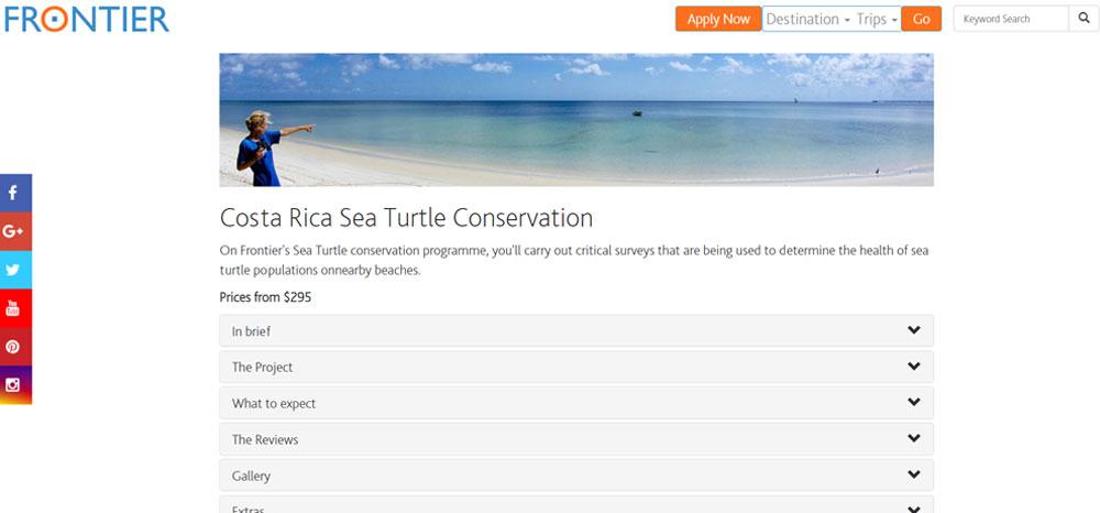 Sea turtle volunteer with Frontier