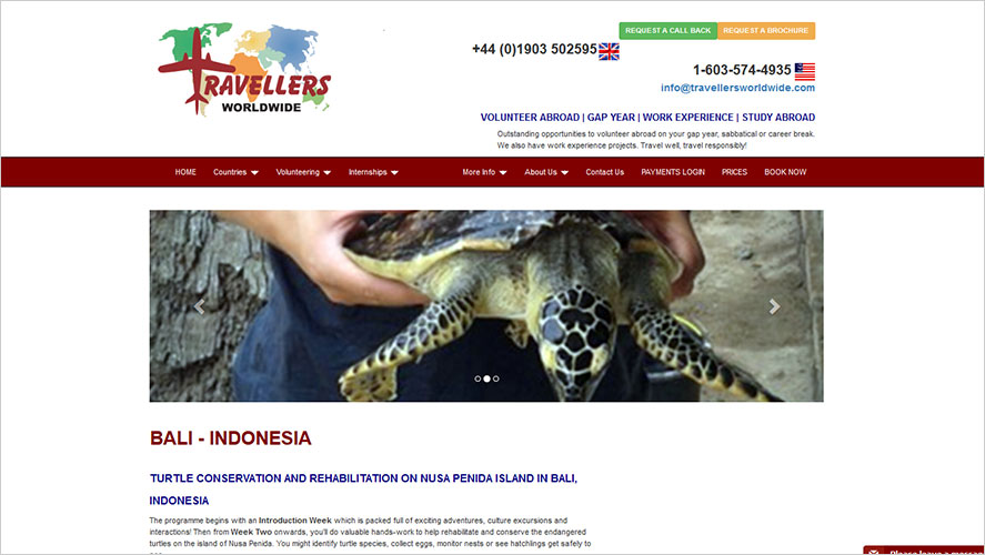 Turtle conservation Travellers Worldwide
