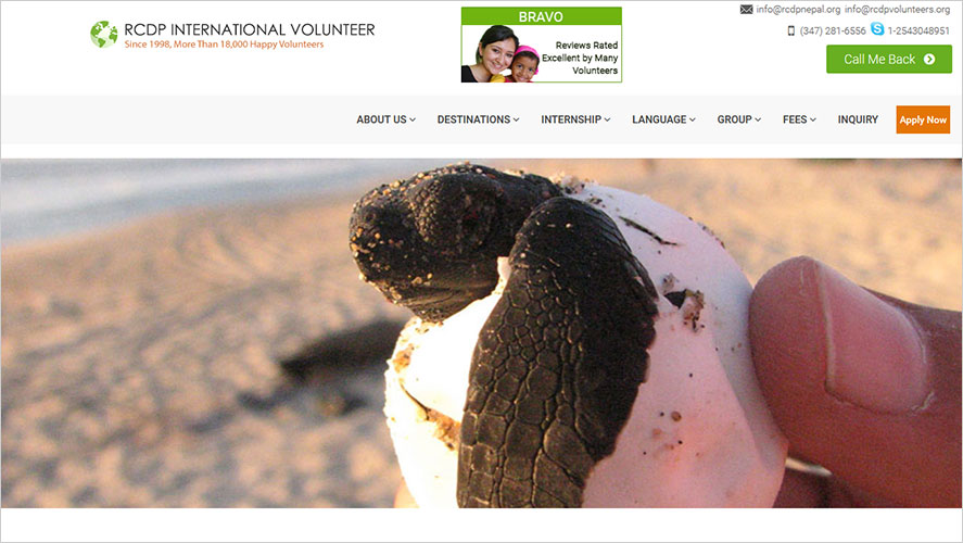 Turtle conservation RCDP Intl
