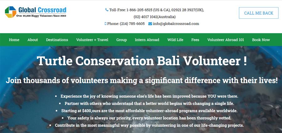 gcr bali turtle project