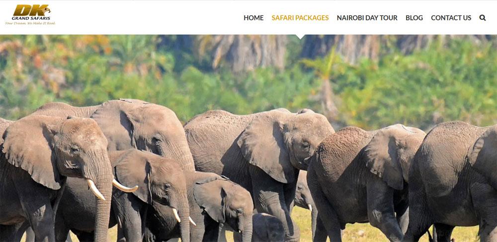tanzania tours operators