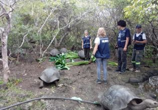 Galapagos Conservation in Ecuador - Over 20,000 Happy Volunteers since 2003