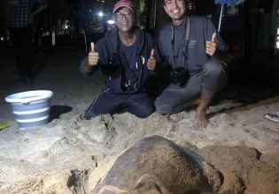 Teaching English & Turtle Conservation Combo in Bali - Over 20,000 Happy Volunteers since 2003