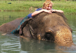 Elephant Hug and Care Program