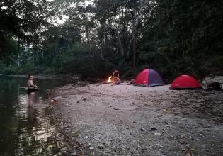 Biodiversity Research in the Amazon Rainforest