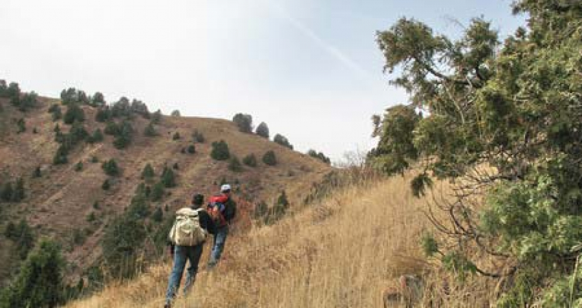 Yangiabad – the Jewel of Uzbekistan's Mountains Tour