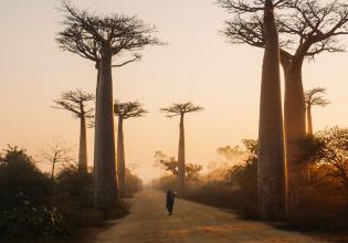 Descent Of Manambolo Madagascar In 11 days
