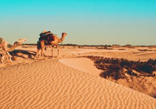 8 Days Tunisia Essential Discovery Tour
