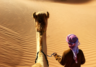 Camel Riding Adventure at Great Oriental Erg 7 Days/ 6 Nights