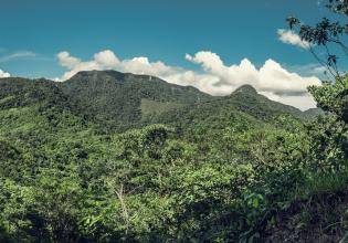 3-day Amazon Jungle Adventure Tour