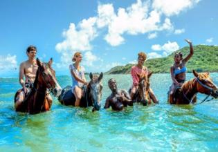 Horseback Ride 'n' Swim in St. Lucia