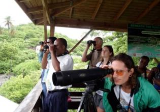 GRENADA BIRD WATCHING TOUR