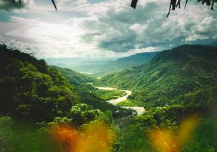 4 days - Tambopata Amazon Jungle