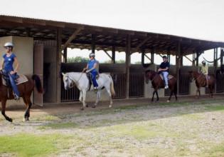 Horseback Riding Adventure Tour