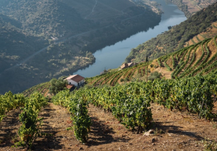Douro Valley: Premium & Private Tour