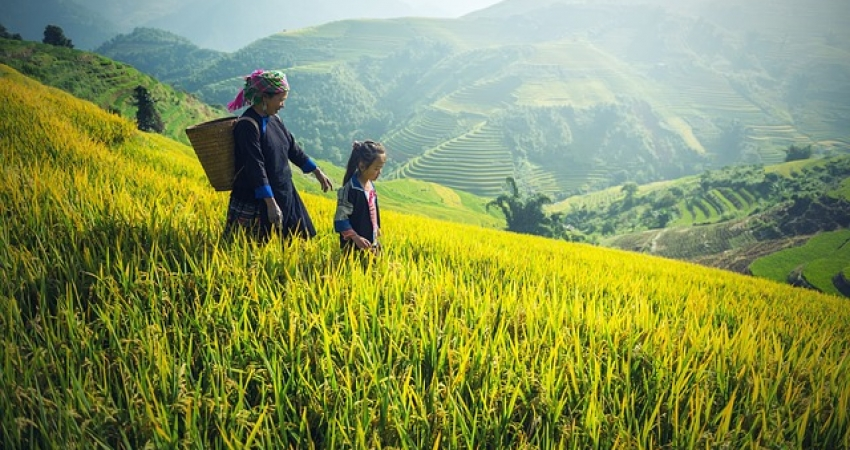 Myanmar Discovery - 9 Days